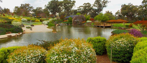 Take time to explore the Cowra Japanese Garden and experience its tranquillity and beauty